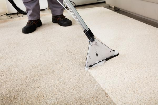 carpet cleaner charlotte